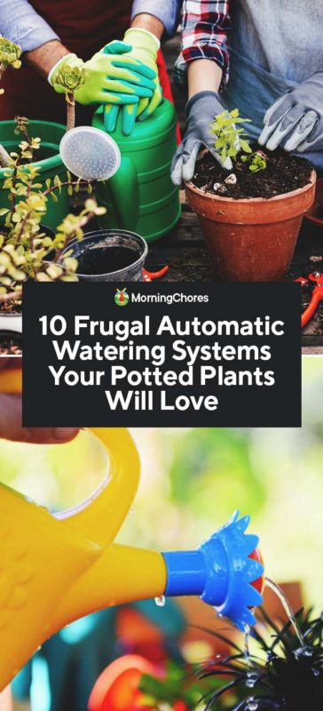This image has an empty alt attribute; its file name is 10-Frugal-Automatic-Watering-Systems-Your-Potted-Plants-Will-Love-PIN-364x800.jpg