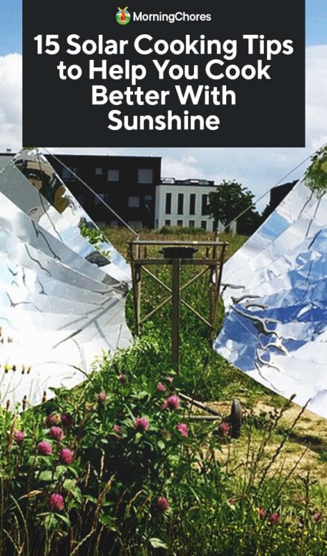 This image has an empty alt attribute; its file name is 15-Solar-Cooking-Tips-to-Help-You-Cook-Better-With-Sunshine-PIN-470x800.jpg