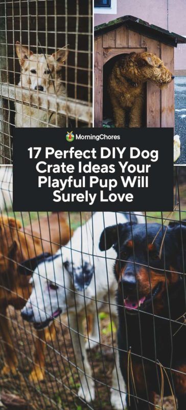 This image has an empty alt attribute; its file name is 17-Perfect-DIY-Dog-Crate-Ideas-Your-Playful-Pup-Will-Surely-Love-PIN-364x800.jpg
