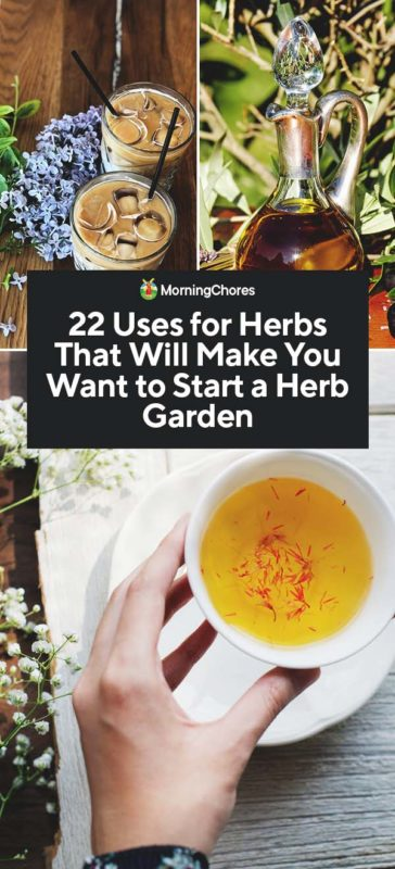 This image has an empty alt attribute; its file name is 22-Uses-for-Herbs-That-Will-Make-You-Want-to-Start-a-Herb-Garden-PIN-364x800.jpg