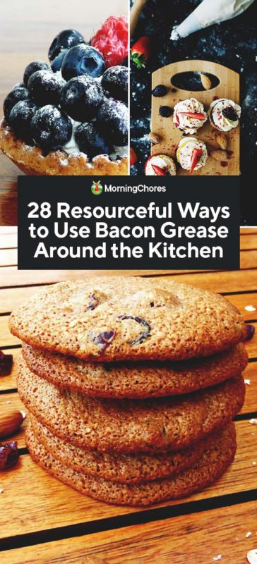 This image has an empty alt attribute; its file name is 28-Resourceful-Ways-to-Use-Bacon-Grease-Around-the-Kitchen-PIN-364x800.jpg