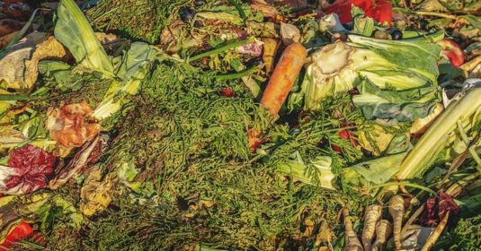 Carbon to Nitrogen Compost Calculator: Create the Perfect Compost Pile
