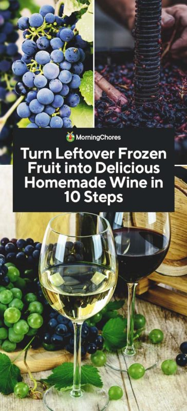 This image has an empty alt attribute; its file name is Turn-Leftover-Frozen-Fruit-into-Delicious-Homemade-Wine-in-10-Steps-PIN-364x800.jpg