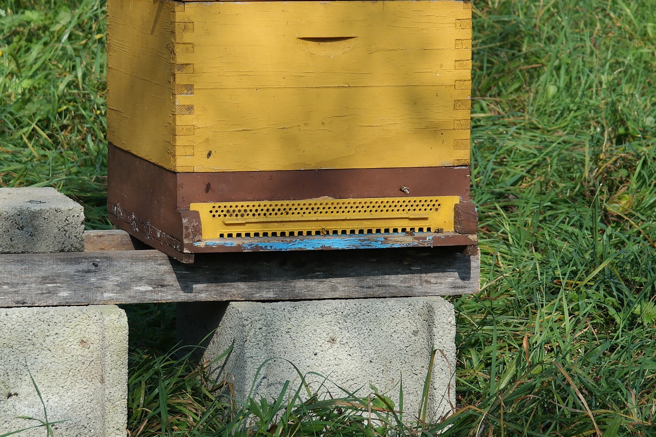 Keep the hive off the ground away from bee predators