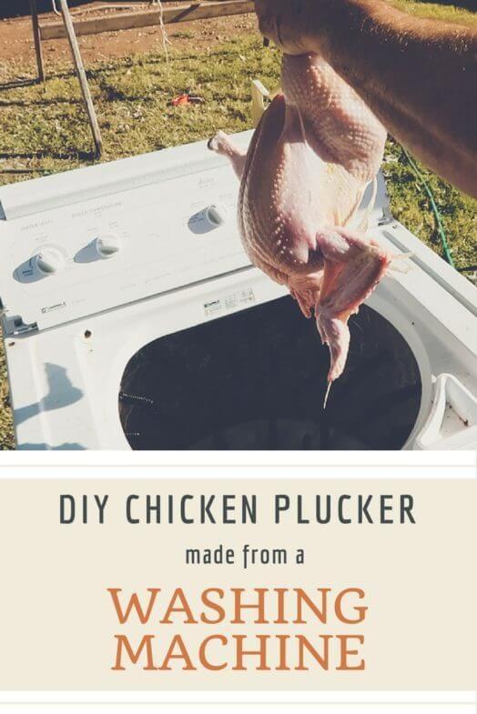 Washing machine DIY chicken plucker