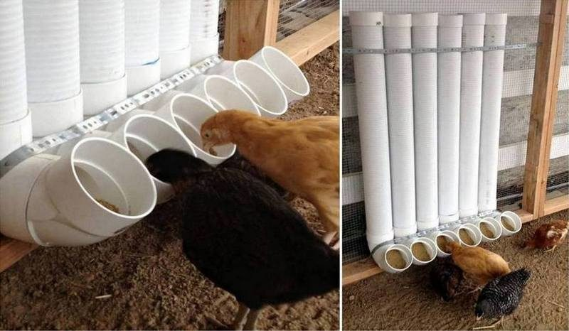 PVC pipe projects to feed chickens with