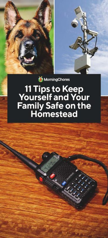 This image has an empty alt attribute; its file name is 11-Tips-to-Keep-Yourself-and-Your-Family-Safe-on-the-Homestead-PIN-364x800.jpg