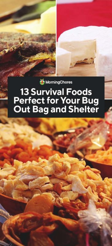 This image has an empty alt attribute; its file name is 13-Survival-Foods-Perfect-for-Your-Bug-Out-Bag-and-Shelter-PIN-364x800.jpg