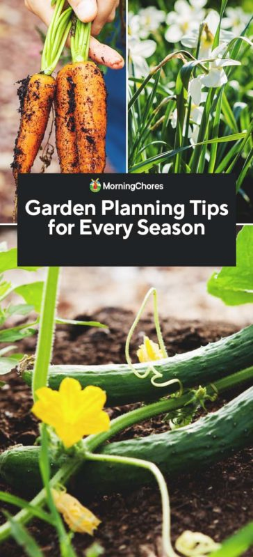 This image has an empty alt attribute; its file name is Garden-Planning-Tips-for-Every-Season-PIN-364x800.jpg