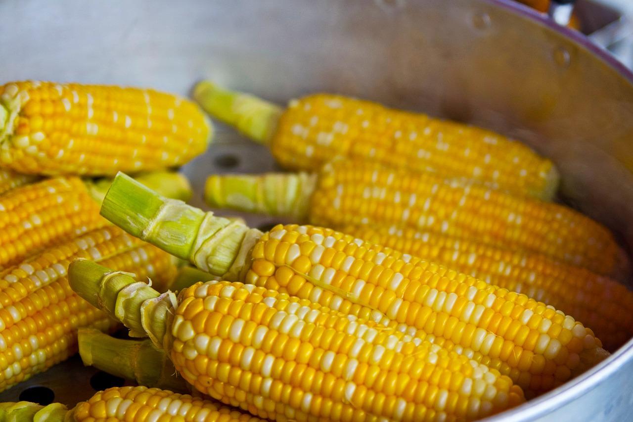 silk the corn to can the corn