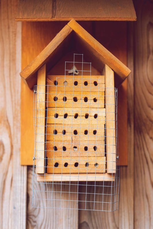 a wooden DIY bee house