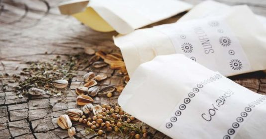 12 Ingenious Ways To Get Your Hands on Free Seeds