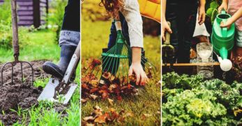 What Is Gardening Burnout and How to Deal with It