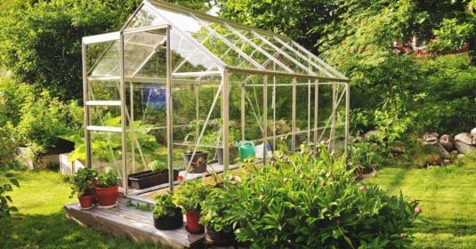 How to Use a Greenhouse: A Getting Started Guide