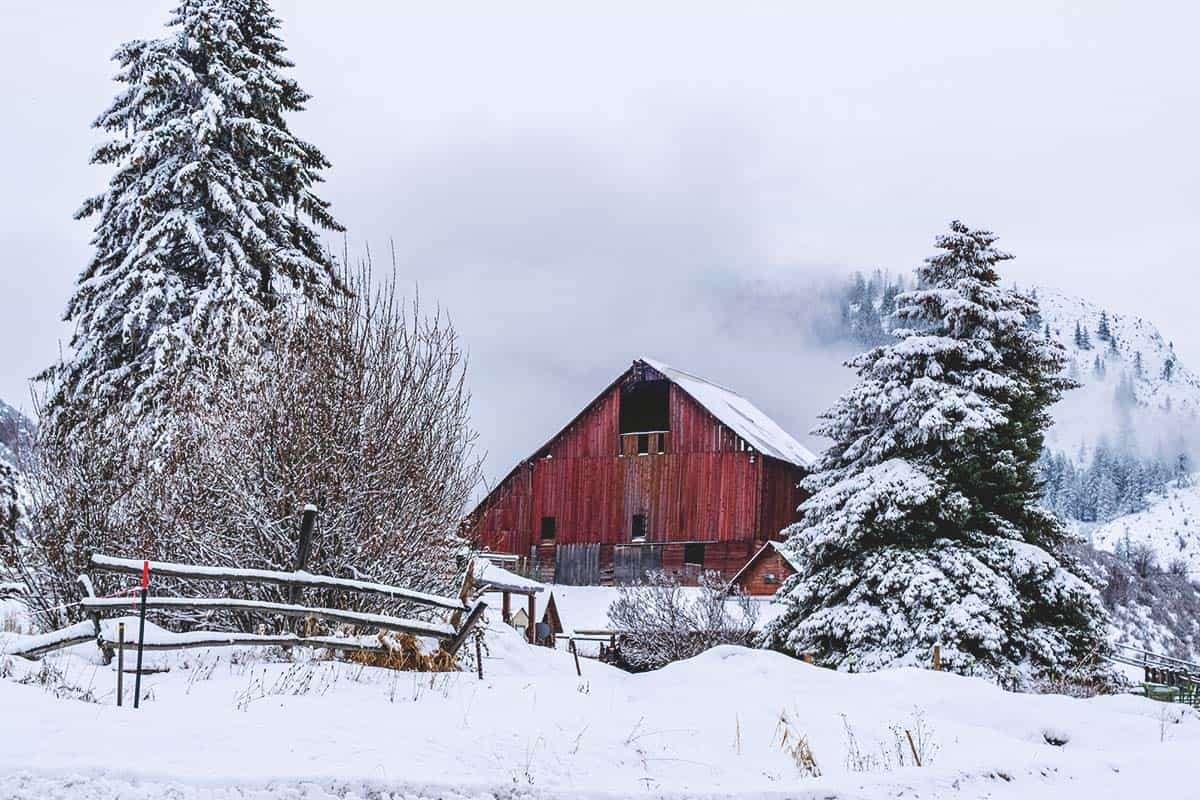 How to Prepare Your Homestead for a Blizzard