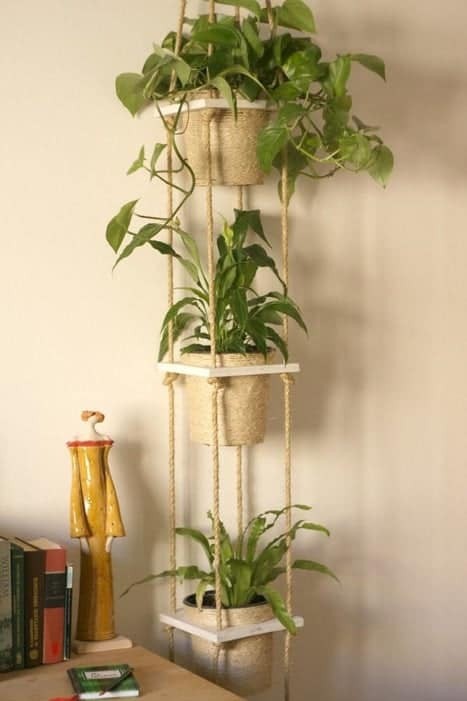 indoor vertical garden from dainty rope