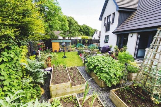Urban, Suburban, and Rural Homesteading:  Which Type Is Right for You