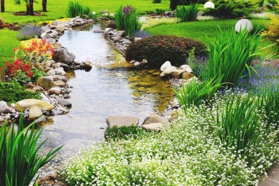 How to Build a DIY Water Garden in Your Yard
