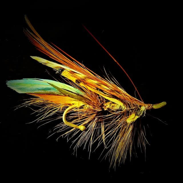 quail feathers are used by fly fishermen to make flies, so it is another thing that can be sold to make raising quail for profit worthwhile