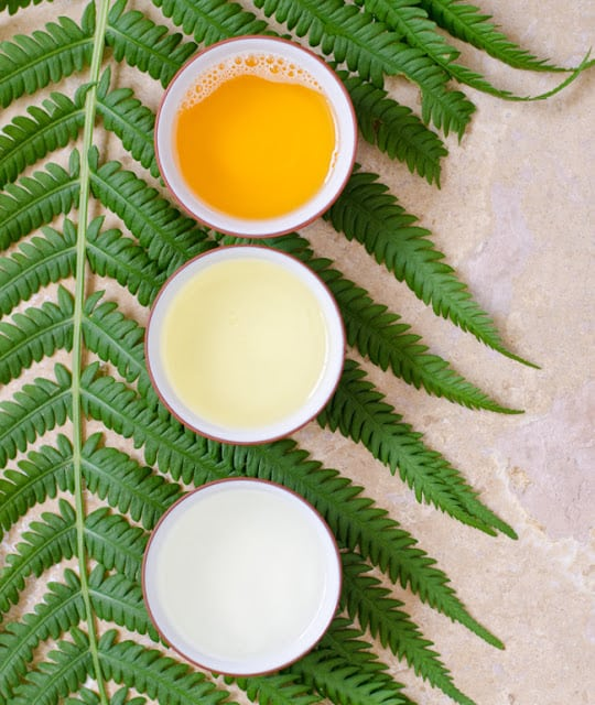 aloe vela beauty recipes