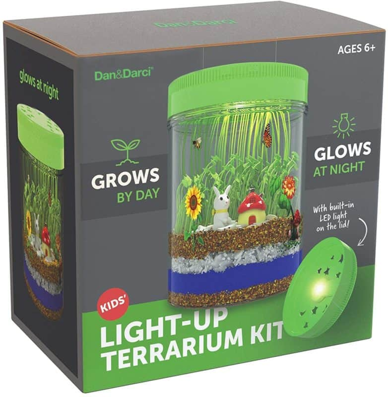Dan&Darci Light-up Terrarium Kit for Kids with LED Light on Lid
