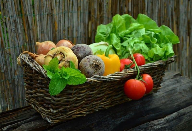 rock dust can help you enjoy healthy garden produce