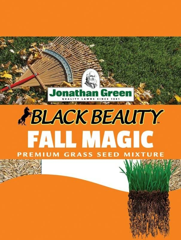 Jonathan Green 10765 Fall Magic Grass Seed Mix