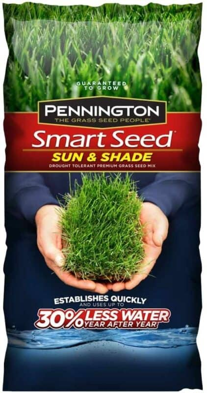 Pennington Smart Seed 100086839 Sun and Shade Seeds.