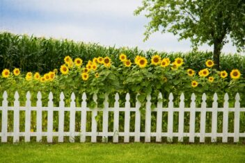 Decorative Fences