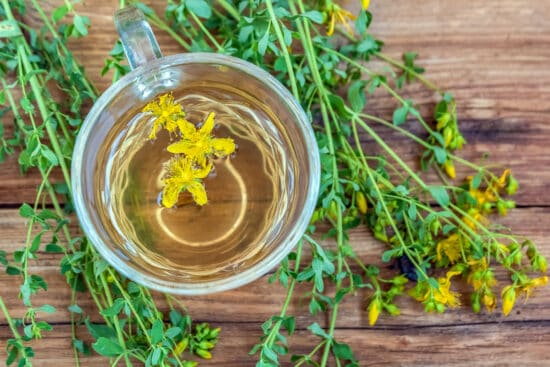 Infusion, Decoction, or Tincture? Which Herbal Preparations to Use for Different Plant Parts