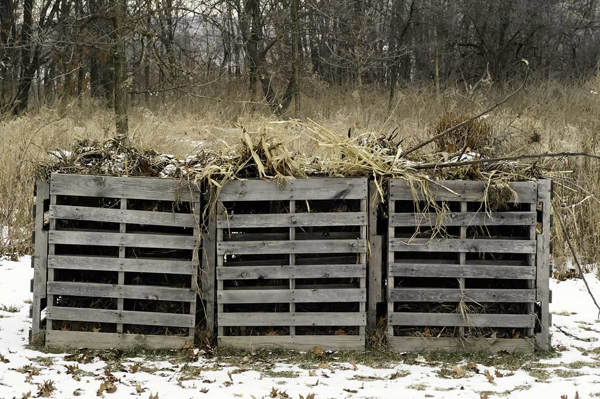 11 Winter Composting Tips You Need to Know