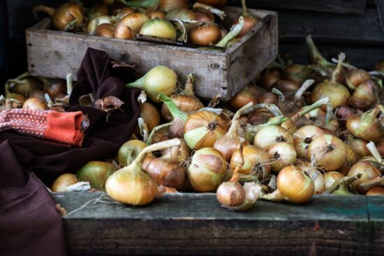 8 Tips for Storing Onions to Increase Their Longevity