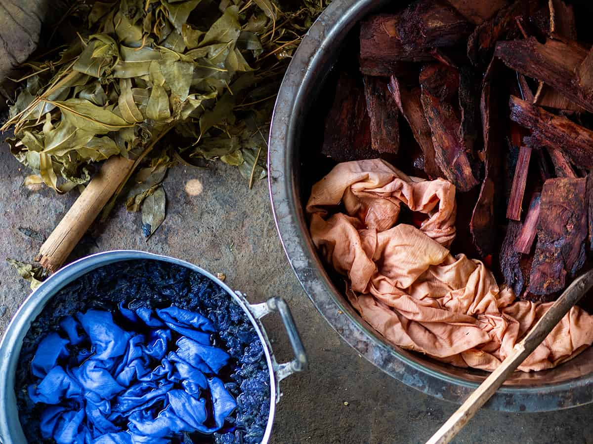 20 Natural Dye Plants You Can Forage and Grow in Your Garden