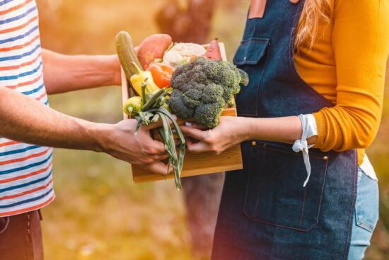 10 Ways to Use Extra Veggies from Your Garden Without Wasting